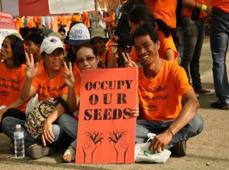 occupy movement and social networking