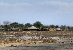A typical traditional Maasai village next to the road
