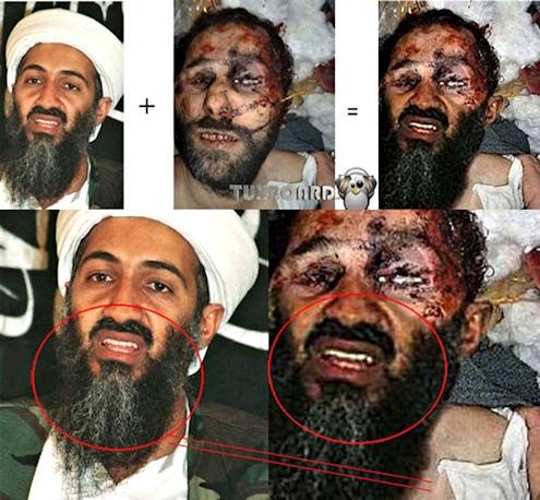 Dood van Osama bin Laden  Wikipedia